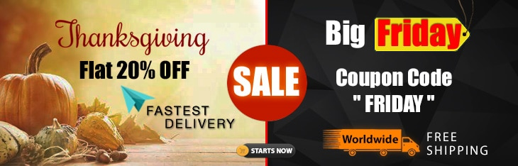 Thanksgiving Big Friday Sale